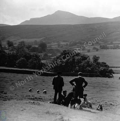 Mallerstang, Sheep Dog Trials